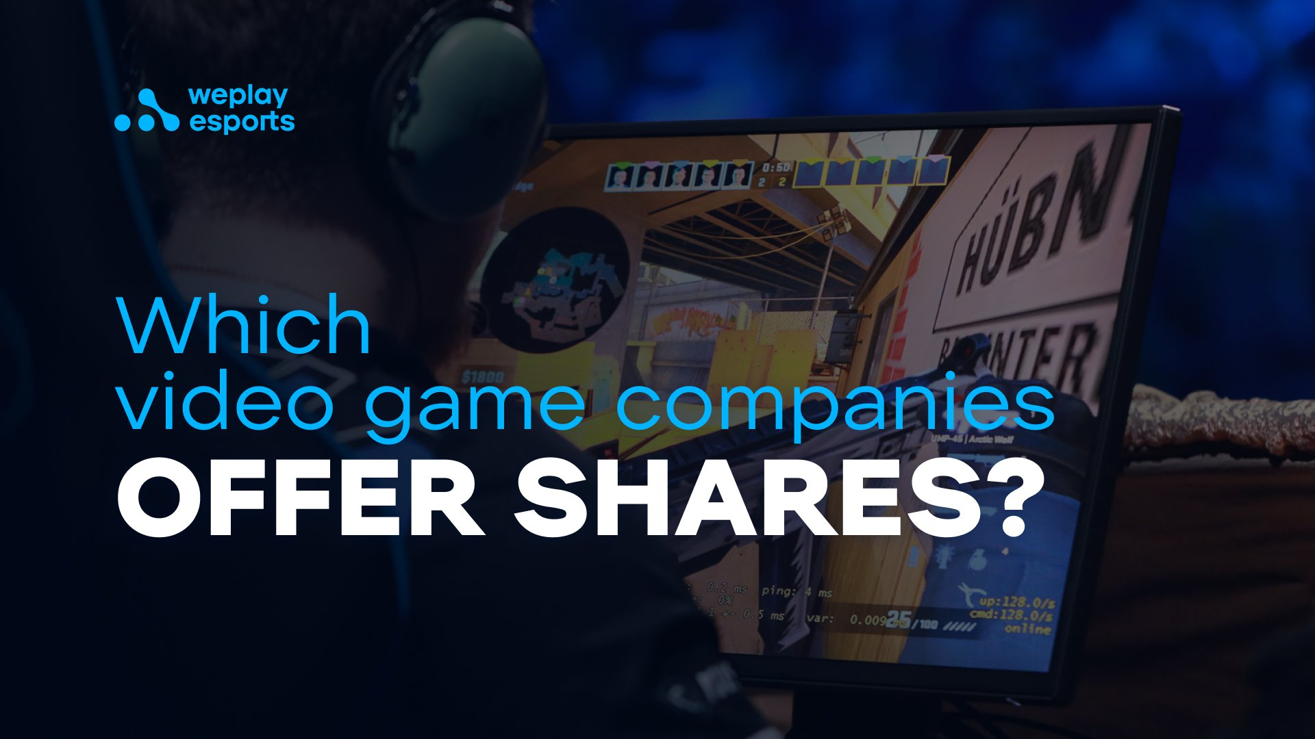 Which video game companies offer shares?
